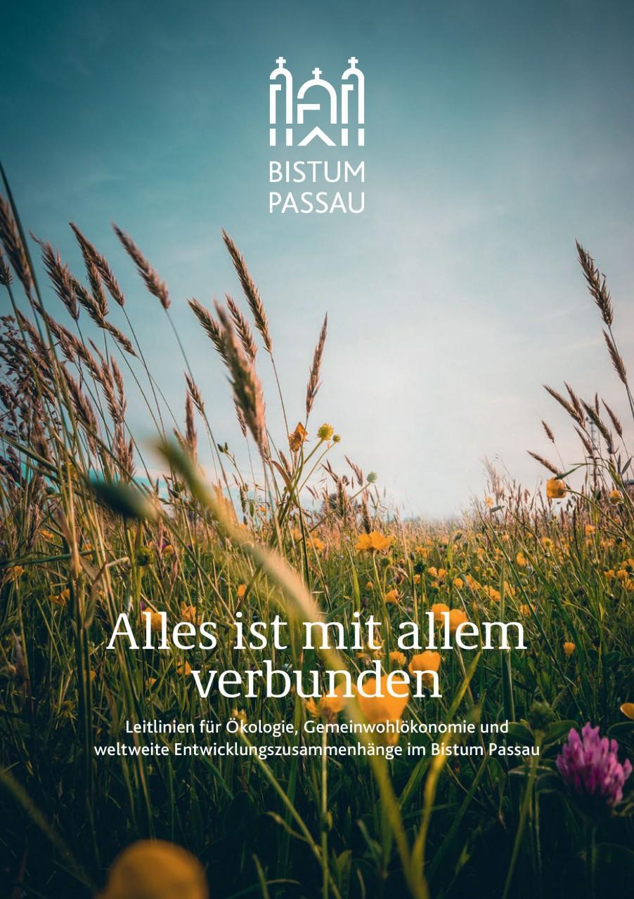umw_A5_Brosch_Oekoleitlinien_web_Deckblatt.jpg